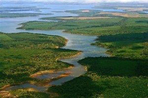Esteros del Iberá. Fuente: Evelyn Proimos